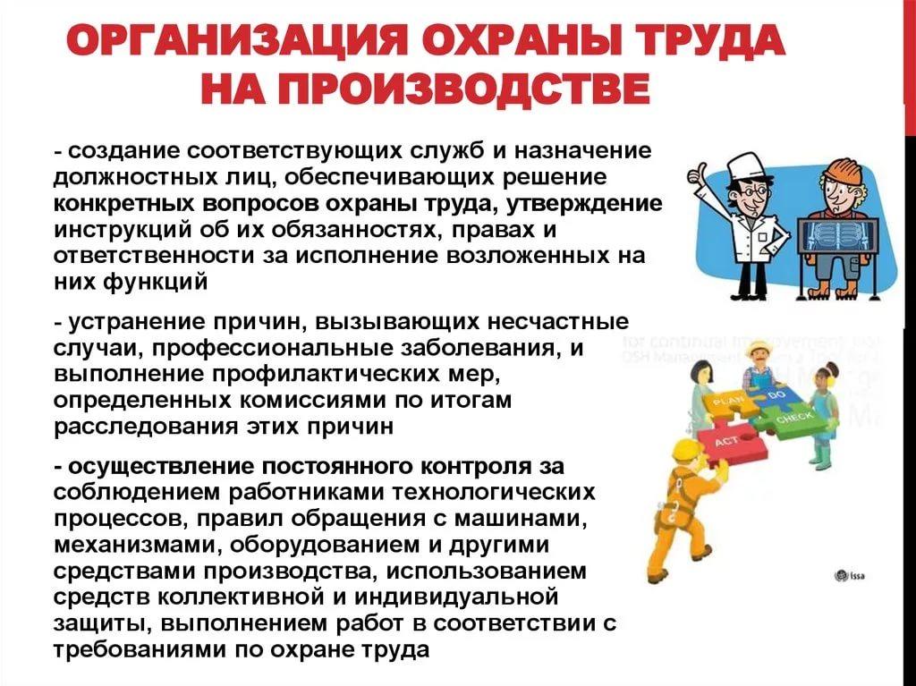 Организация охраны труда и техники безопасности